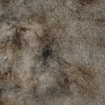 Темні пилові туманності B79/B276 (LDN 216/LDN 219) в Змієносці